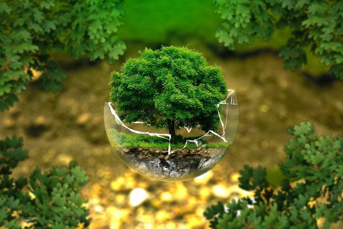 Consultoría medio ambiente